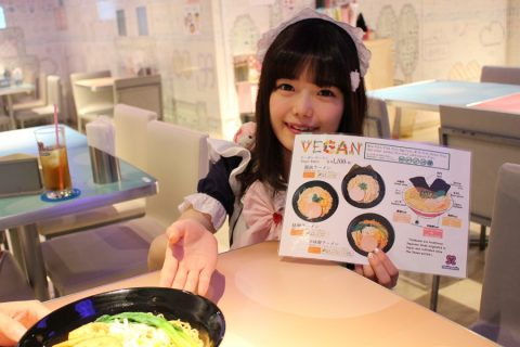 Maid Cafe Maidreamin Will Take All Your Worries Away